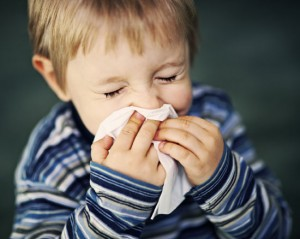 Removing Allergens at Home That May Harm Your Kid